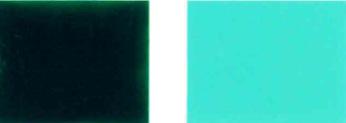 వర్ణక-గ్రీన్-7-రంగు