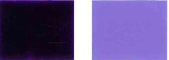 వర్ణక-వైలెట్-23-రంగు